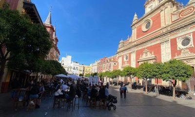 AionSur plaza-salvador-sevilla-400x240 Denuncian a dos jóvenes que disparaban desde un céntrico ático de Sevilla a ejemplares de cernícalos Sevilla Sucesos