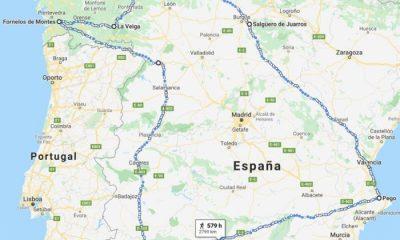 AionSur: Noticias de Sevilla, sus Comarcas y Andalucía teleworking-pueblos-400x240 Aznalcázar se une a la red que busca recuperar los herbívoros salvajes en toda España Animales Naturaleza