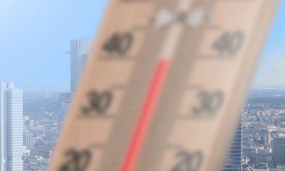 AionSur: Noticias de Sevilla, sus Comarcas y Andalucía calor-400x240 Activados avisos de calor para mañana en las campiñas de Sevilla y Córdoba Córdoba Sevilla Sociedad destacado