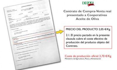 AionSur contrato-compra-venta-aceite-oliva-min-400x240 COAG denuncia coacciones a las cooperativas para que vendan su aceite por debajo de coste Agricultura Asociaciones destacado