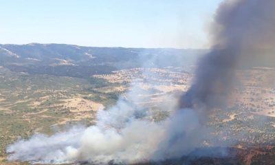 AionSur incendio-cabezas-rubias-400x240 El primer gran incendio del verano en Huelva afecta a un paraje de Cabezas Rubias Huelva Incendios Forestales Sucesos destacado