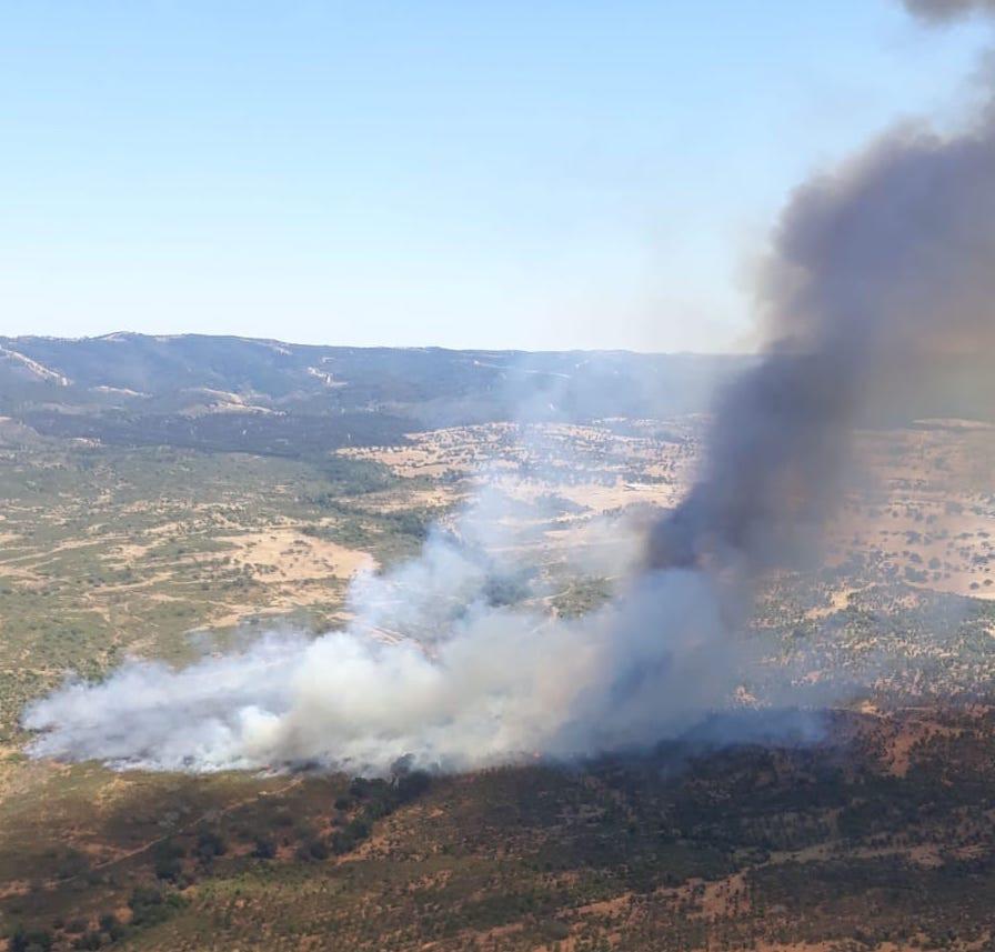 AionSur incendio-cabezas-rubias El primer gran incendio del verano en Huelva afecta a un paraje de Cabezas Rubias Huelva Incendios Forestales Sucesos destacado