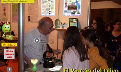 AionSur olivo-min-400x240 Un stand virtual sobre la reproducción del olivo, representación de Arahal en la Feria de la Ciencia de Sevilla Arahal Educación