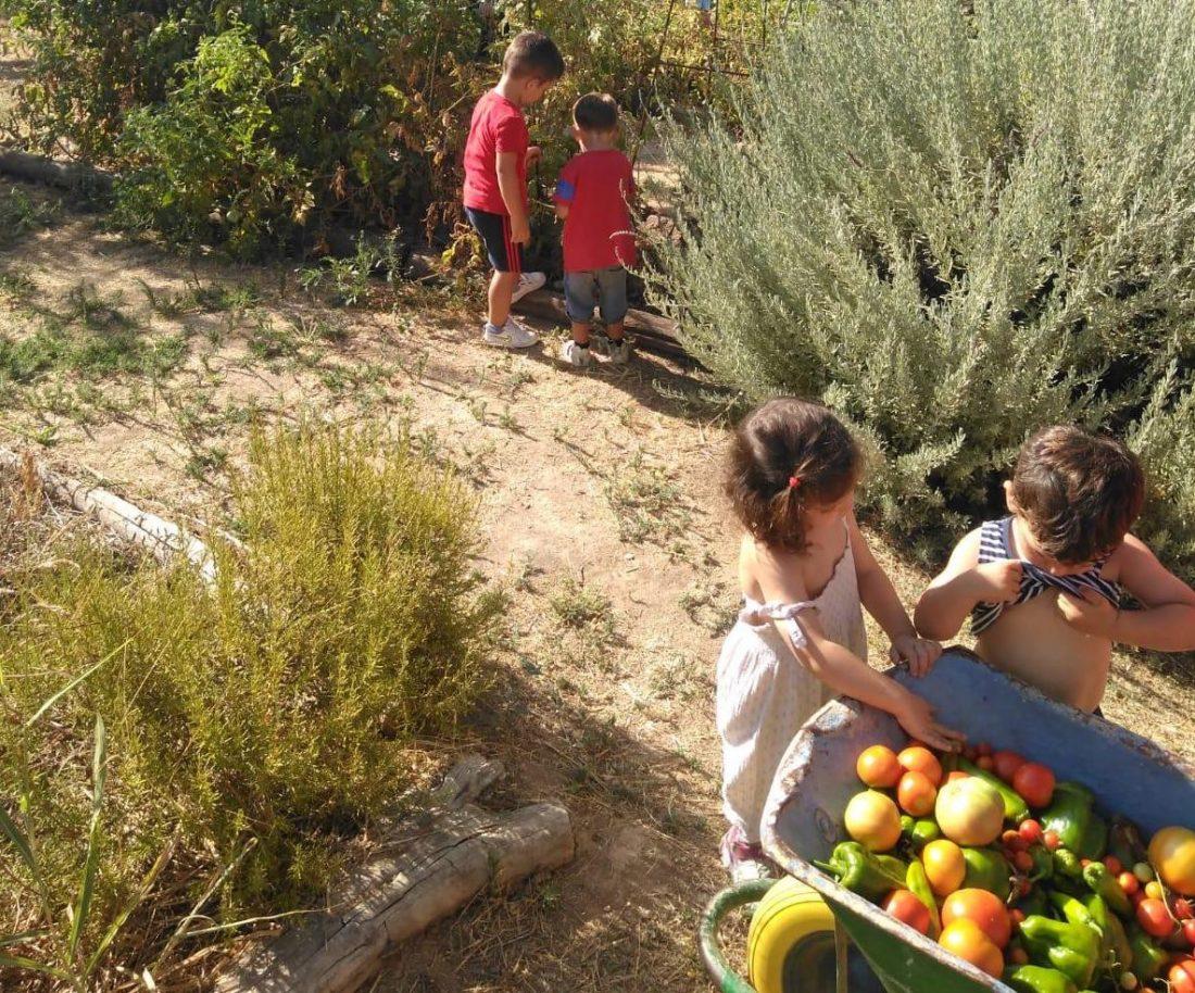 AionSur Granja-Escuela-2 La naturaleza al alcance de los niños Coronavirus Economía