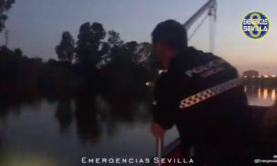 AionSur Policia-Sevilla-400x240 Rescatan a un hombre que se lanzó ebrio al Guadalquivir en Sevilla Sevilla Sucesos destacado