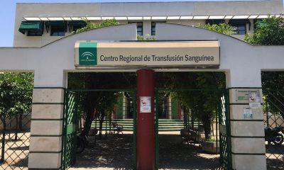 AionSur: Noticias de Sevilla, sus Comarcas y Andalucía Sangre-1-400x240 Puntos de donación de sangre en la provincia de Sevilla esta semana Salud
