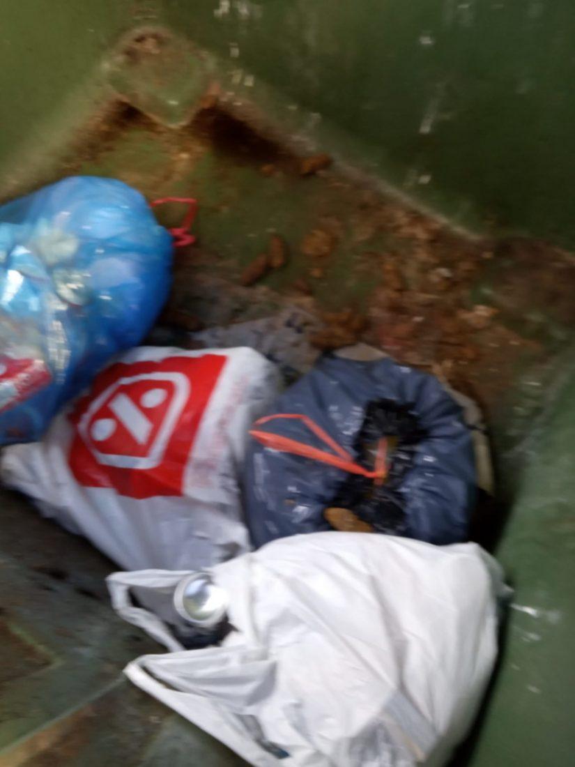 AionSur fb024711-575c-41eb-9572-d2ea90870486-min Denuncia que unos contenedores de Arahal son usados para verter excrementos de perros y enseres Arahal destacado