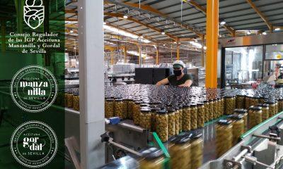 AionSur foto-igp-manzanilla-gordal-de-sevilla-NP-min-400x240 La IGP Manzanilla y Gordal cierra el plazo de inscripción para las industrias envasadoras y centros de compra Sevilla