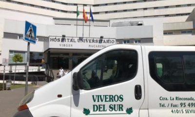 AionSur furgoneta-400x240 Buscan la furgoneta robada a un joven sevillano Sevilla Sucesos