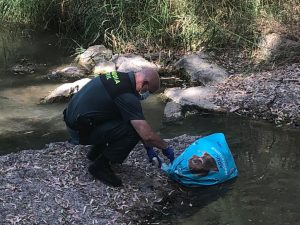 AionSur guardia-civil-perro-300x225 Investigado un vecino de Arahal por presunto maltrato a tres galgos, dos de ellos muertos Animales Arahal Naturaleza destacado