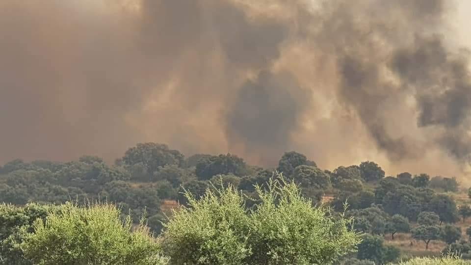 AionSur incendio-Huelva Arde de nuevo la sierra de Huelva Huelva Incendios Forestales Sucesos destacado
