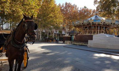 """AionSur 20171212_112226-min-400x240 Vox pide en Sevilla ayudas para los cocheros de caballos que pasan por """"una crítica situación"""" Sevilla"""