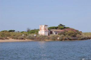 AionSur Almadraba-300x200 ¿Sabías que una playa de la provincia de Huelva crece 40 metros cada año? Huelva Sociedad