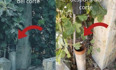 AionSur Tubería-antes-del-corte-1-min-400x240 El Ayuntamiento de Arahal corta la tubería de un pozo municipal del que sacaban agua sin su permiso Arahal destacado