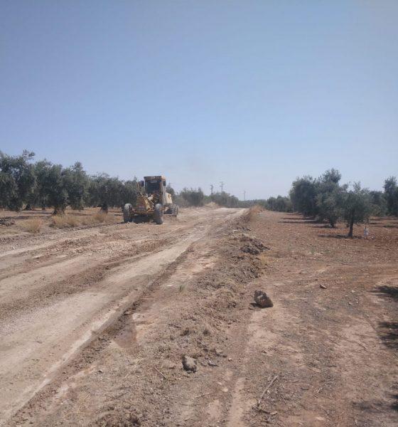 """AionSur b3489061-177e-453c-a085-b0f07d374ccf-min-560x600 Unos 80 agricultores de Arahal piden a la Junta de Andalucía que arregle """"mejor"""" la vereda de Espartero Arahal destacado"""