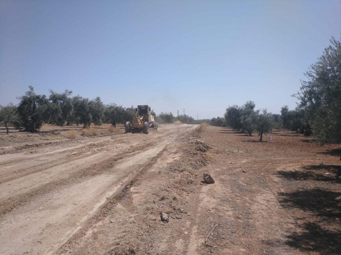 """AionSur b3489061-177e-453c-a085-b0f07d374ccf-min Unos 80 agricultores de Arahal piden a la Junta de Andalucía que arregle """"mejor"""" la vereda de Espartero Arahal destacado"""