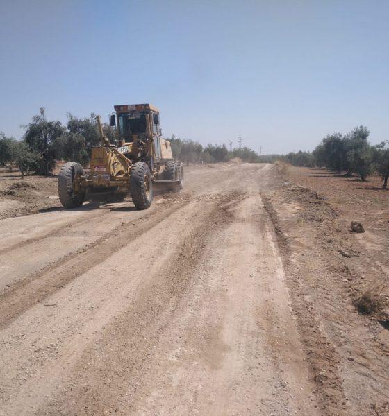 AionSur b977542f-b9b0-4378-8c9d-f0f72abcf413-min-560x600 Comienza el arreglo de la vereda Espartero en Arahal para la campaña de aceitunas Arahal destacado