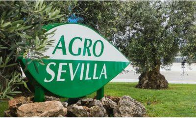 """AionSur fotos-min-400x240 Agro Sevilla anuncia que la plantilla de sus centros de trabajo está """"libre de coronavirus"""" Coronavirus destacado"""