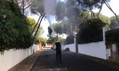AionSur: Noticias de Sevilla, sus Comarcas y Andalucía tratamientoplaga-min-400x240 Fumigación contra el mosquito del virus del Nilo junto al Guadaíra y parques urbanos Alcalá de Guadaíra
