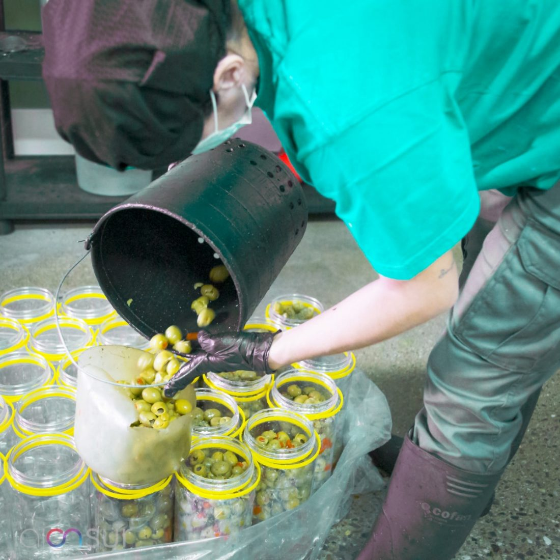 AionSur 4dae3c49-020e-48ef-8a0f-9bebfad39ad9-min «Spain Food Nation», campaña para la promoción de la aceituna de mesa y el aceite de oliva Agricultura