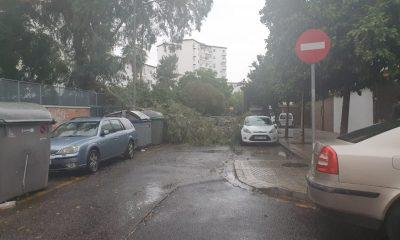 AionSur 038bfa73-7637-4935-b79e-36ef7aac22c2-min-400x240 Emergencias 112 atiende más de 60 incidencias por el viento y la lluvia en Andalucía Sevilla destacado