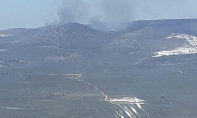AionSur Incendio-forestal-400x240 Arde el paraje Sierra de Yeguas, en Pedrera Incendios Forestales destacado