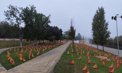 AionSur banderas-sevilla-400x240 Sevilla amanece con 56.000 banderas en homenaje a los fallecidos por COVID Coronavirus