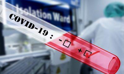AionSur covid-19-4908692_1920-400x240 Mi vida en positivo (Capítulo 14 - Protocolo) - Crónica de 14 días de vida confinada de un positivo de COVID Coronavirus