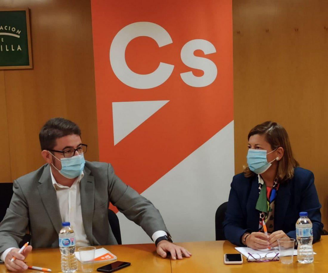 AionSur Ciudadanos-presupuestos Ciudadanos propone que los presupuestos de Diputación de Sevilla incluyan ayudas para autónomos Diputación