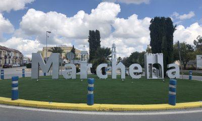 AionSur IMG_3698-min-400x240 Marchena, una de las localidades donde se realizarán los próximos cribados Marchena destacado