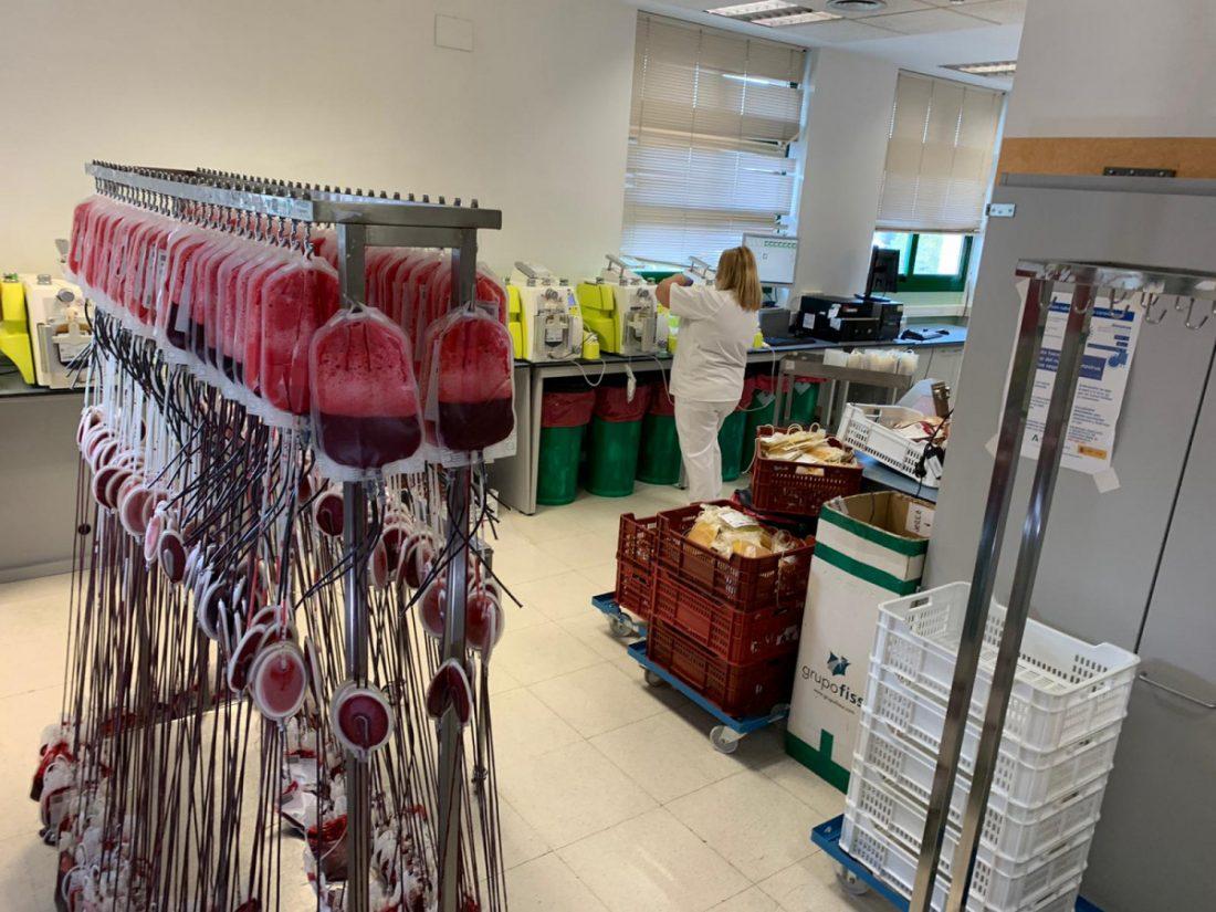 AionSur Sangre-donantes-2 Puntos de donación de sangre en la provincia de Sevilla esta semana Salud