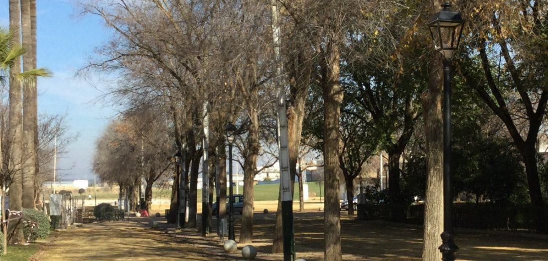 AionSur: Noticias de Sevilla, sus Comarcas y Andalucía herrera-parque Vandalismo en el parque Luis de la Señá María de Herrera Herrera destacado
