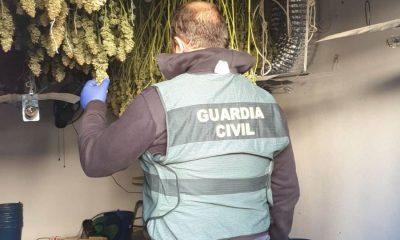 AionSur image003-min-400x240 Desmantelada una plantación de cultivo indoor y elaboración de marihuana en La Roda de Andalucía Sucesos