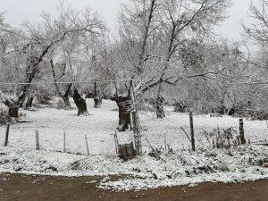 AionSur nieve-aracena-2-300x225 La nieve deja estampas para el recuerdo en la Sierra de Aracena, al norte de la provincia de Huelva Sociedad