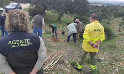 Plantación simbólica de especies autóctonas en Sevilla para conmemorar el 28F