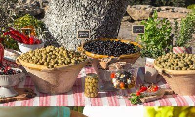 AionSur: Noticias de Sevilla, sus Comarcas y Andalucía Sin-titulo-min-400x240 Dcoop invierte 20 millones de euros en Osuna en la construcción de una planta de tratamiento de orujo de oliva Empresas destacado