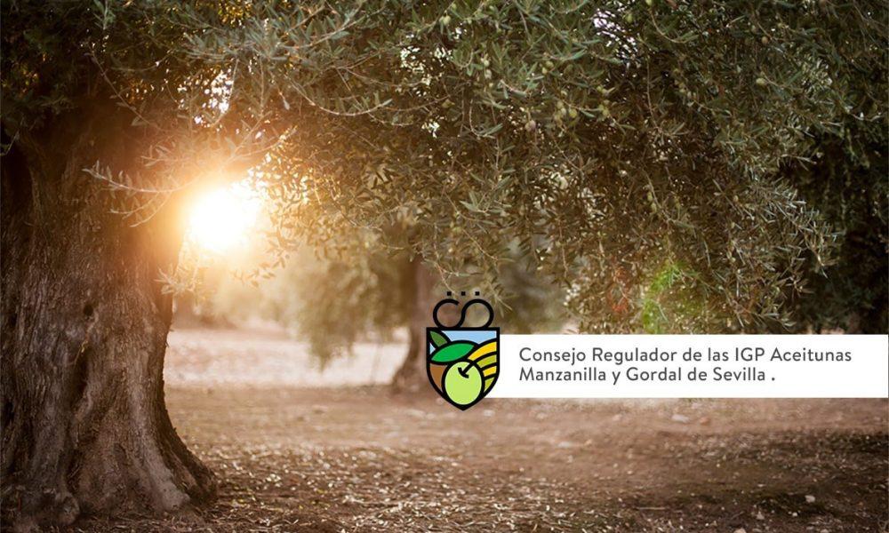 Satisfacción de la IGP de la Manzanilla y Gordal por el apoyo de más de 3.500 inscritos del sector olivarero