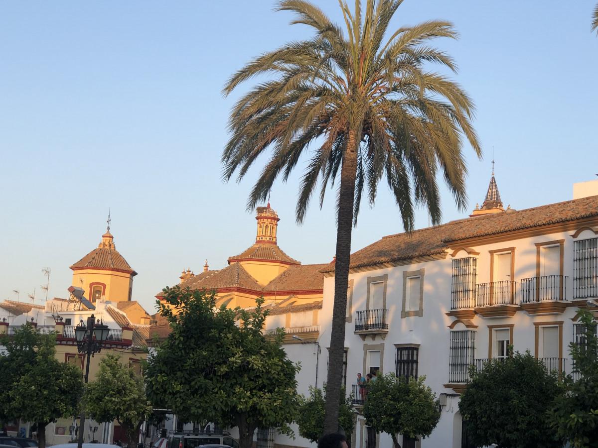 AionSur: Noticias de Sevilla, sus Comarcas y Andalucía IMG_3715-min La Junta vuelve a decretar el cierre perimetral de Paradas junto con otros seis pueblos de la provincia Coronavirus destacado