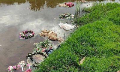 AionSur: Noticias de Sevilla, sus Comarcas y Andalucía Cantillana-corderos-400x240 Macabro hallazgo de cadáveres de corderos en un ritual en Cantillana Sucesos destacado