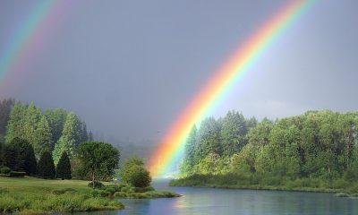AionSur: Noticias de Sevilla, sus Comarcas y Andalucía arcoiris-400x240 Feliz día mundial del arcoíris Sociedad naturaleza destacado arcoiris