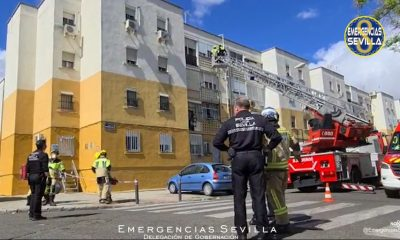 "AionSur: Noticias de Sevilla, sus Comarcas y Andalucía atropello-Sevilla-400x240 La policía busca a un varón ""de unos 30 años"" como presunto autor del atropello mortal anoche en Sevilla Sucesos Sevilla emergencias Sevilla accidente mortal accidente"
