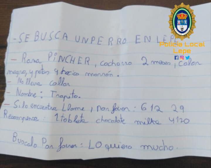 """AionSur: Noticias de Sevilla, sus Comarcas y Andalucía perro-perdido """"Por favor, encuentren a mi perrito"""", el mensaje de un niño que conmueve en las redes Sociedad"""