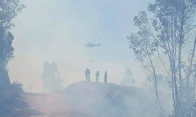 AionSur: Noticias de Sevilla, sus Comarcas y Andalucía 182371595_4029397503817127_868807891323881871_n-400x240 Estabilizado el incendio de La Puebla del Río Provincia