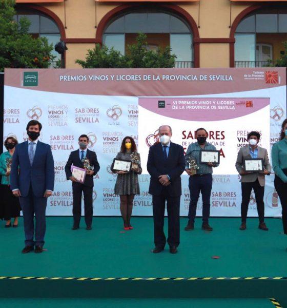 AionSur: Noticias de Sevilla, sus Comarcas y Andalucía Vinos-Sevilla-560x600 Los mejores vinos de la provincia de Sevilla ya son oficiales Prodetur destacado