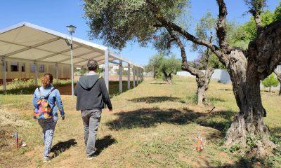AionSur: Noticias de Sevilla, sus Comarcas y Andalucía benacazon-insti-3-400x240 Matemáticas en mitad de un olivar en Benacazón Sociedad