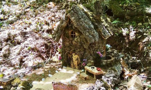 AionSur: Noticias de Sevilla, sus Comarcas y Andalucía jabugo-cuentos-590x354 'El zapatero y los duendes' se mudan a un campo en la Sierra de Aracena Sociedad destacado