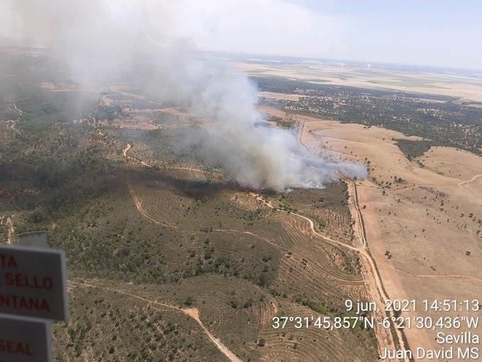 Declarado un incendio forestal en un paraje de Aznalcóllar